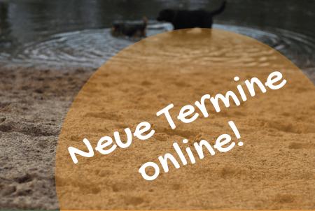 neue-termine-hell